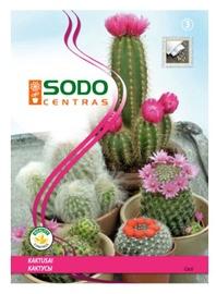 Kaktusu sēklu maisījums Sodo Centras