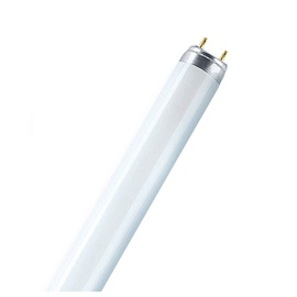 Liuminescencinė lempa Radium T8, 58W, G13, 6500K, 5000lm