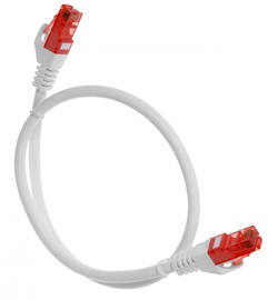 Maclean Cat. 6 RJ-45 To RJ -45 Cable 3 m White