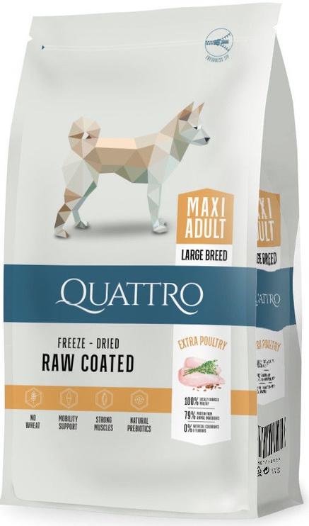Корм Quattro для больших собак с птицей 3 кг