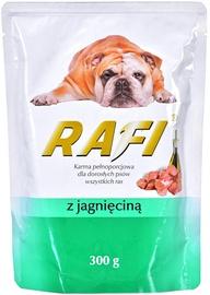 Dolina Noteci Rafi Wet Dog Food Lamb 300g
