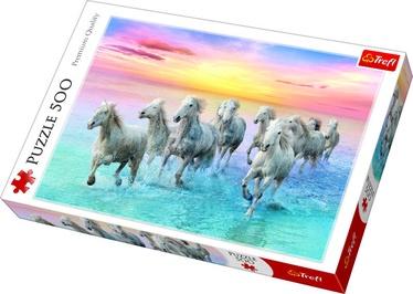 Puzle Trefl Galloping White Horses 37289, 500 gab.