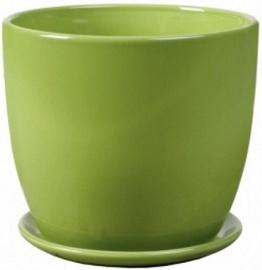 Polnix 02.445.15 Green