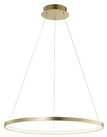 Verners Circle Ceiling Lamp 28.5W LED Gold