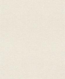 Viniliniai tapetai Rasch Cato 800654