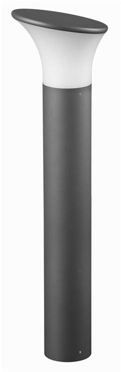Pastatomasis šviestuvas Domoletti GL11407, 1x23W, E27