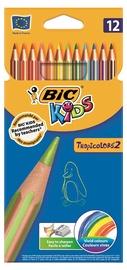 BIC Kids Tropicolors Colouring Pencils 12pcs