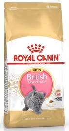 Сухой корм для кошек Royal Canin FBN Kitten British Shorthair 10kg