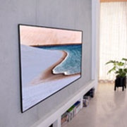 Televizorius LG OLED65GX3LA