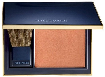 Vaigu ēnas Estee Lauder Pure Color Envy Sculpting 110, 7 g