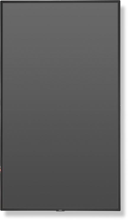 Monitorius NEC MultiSync P404