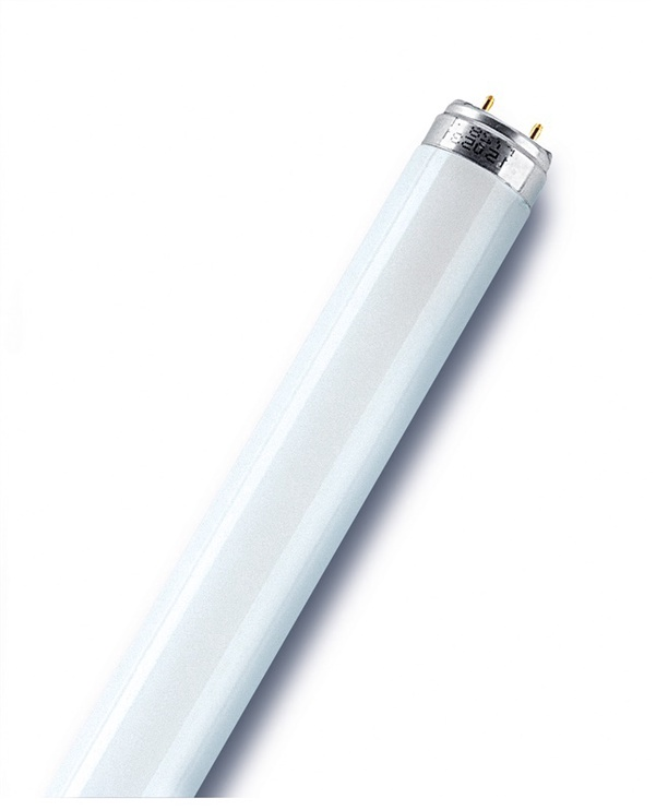 Liuminescencinė lempa Osram T8, 58 W, G13, 3000K, 5200 lm