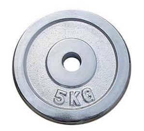 Diskinis svoris grifui YLPS18, chromuotas, 5 kg