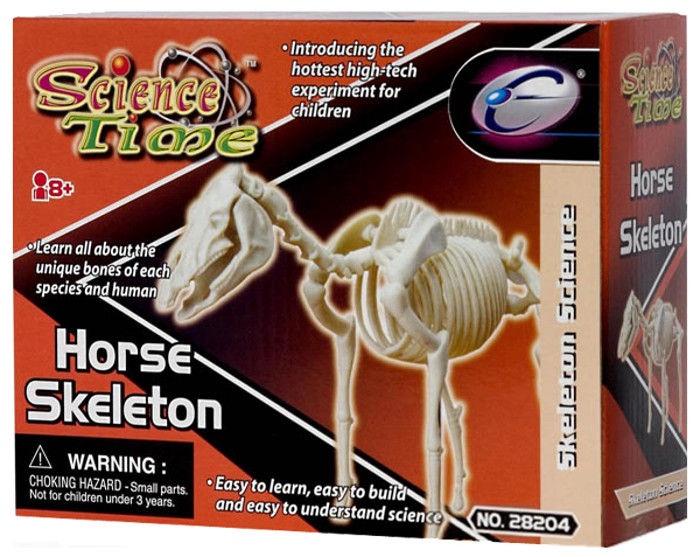 Eastcolight Horse Skeleton 28008/28204