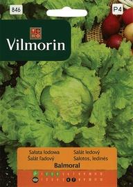 Salotų sėklos Balmoral
