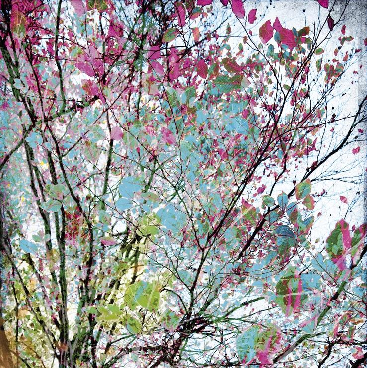 Fototapetas Rasch Young Artists 100983,300x186cm