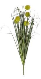 Home4you Bouquet Herbarium 5pcs In Garden H59cm 83853