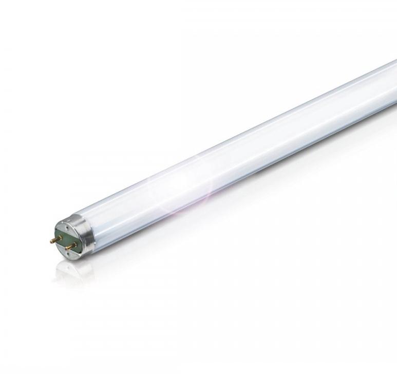 Liuminescencinė lempa Nordeon T8, 36W, G13, 6500K, 3015lm