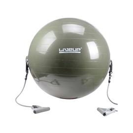 Gimnastikos kamuolys LS3227, 65cm