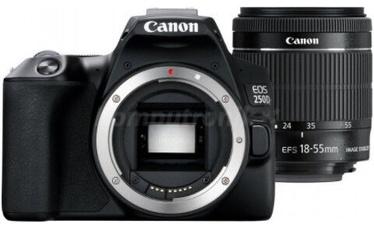 Peegelfotoaparaat Canon EOS 250D