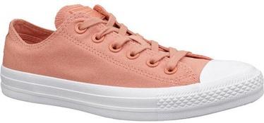 Sieviešu sporta apavi Converse Chuck Taylor, oranža, 38