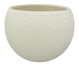 Вазон SN Ceramic Pot Lizard Ø12cm Creamy
