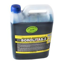 Antiseptikas Borolitas-2, bespalvis, 4 l