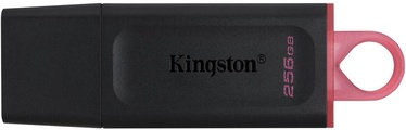 Kingston DataTravel Exodia 256GB