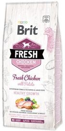 Сухой корм для собак Brit Puppy Fresh Chicken With Potato Healthy Growth 12kg