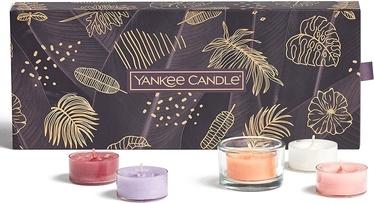 Свеча Yankee Candle Home scents The Last Paradise, 6 час, 10 шт.