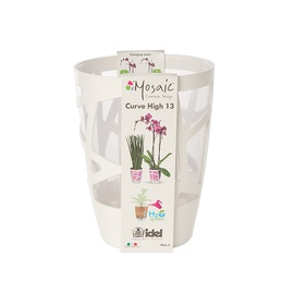 Puķu pods orhid. d13 mosch0013-609