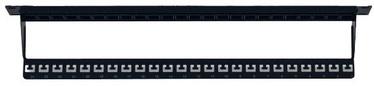 Intellinet Blank 24-Port Panel With Cable Organizer 1U 19'' Black