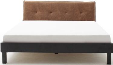 Gulta Meise Möbel Boston-3 Block Metal Foot Cognac, 200x160 cm