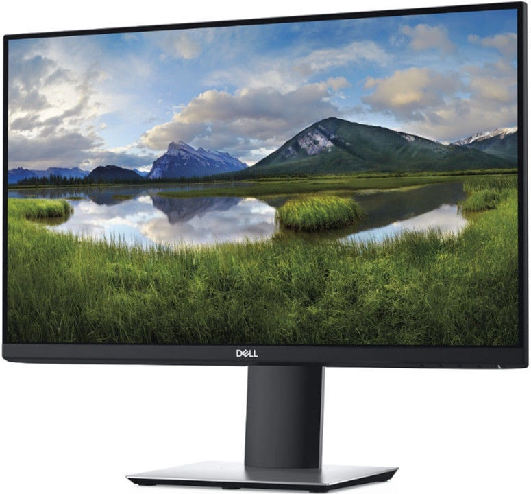 "Monitorius Dell P2421D, 23.8"", 5 ms"