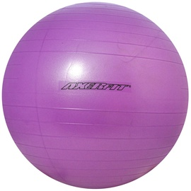 Axer Sport Anti Burst Gym Ball 65cm Purple
