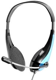 Ausinės Tracer Office Headset