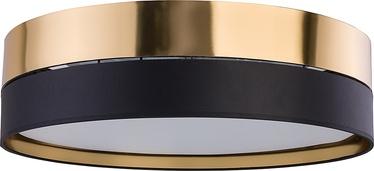 Lubinis šviestuvas TK Lighting Hilton 4345, 4x15W E27 LED