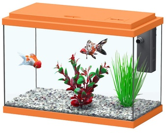 Aquatlantis Funny Fish 50 Orange