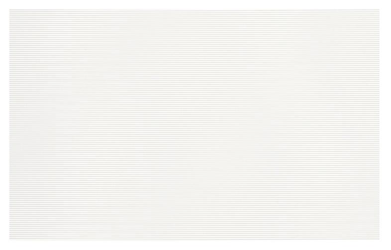 Keraminės sienų plytelės PS205 VERNO WHITE 25X40