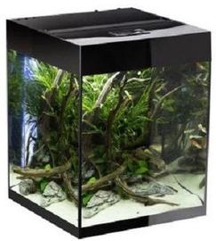 Aquael Aquarium Glossy 50x50x63cm