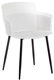 Home4you Chairs Toby 4pcs White