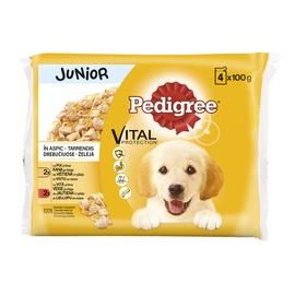 Konservuotas ėdalas šunims Pedigree Pouch Junior, su paukštiena, 4 x 100 gr