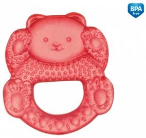 Canpol Babies Water Teether Little Bear 2/204