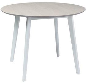 Pusdienu galds Signal Meble Mosso II White Oak/White, 1000x1000x750 mm