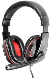 Ausinės Tracer Rohu Rev.2 Headset