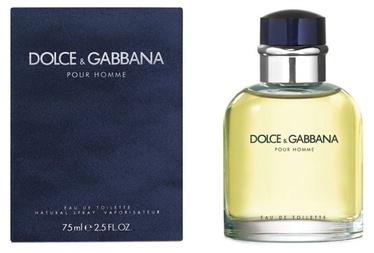 Tualetes ūdens Dolce & Gabbana Pour Homme 75ml EDT
