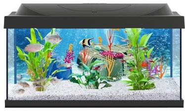 Akvariumas Tetra Playmobil, juodas, 54 l
