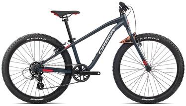 """Jalgratas Orbea MX 24 Dirt, sinine/punane, 24"""""""