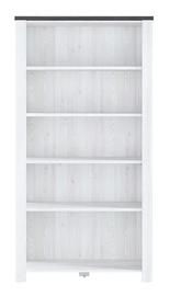 Black Red White Antwerpen Bookshelf Larch Light/Larico Pine