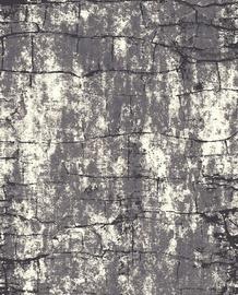 Paklājs Mutas Carpet 5764a_l1868, pelēka, 150x100 cm